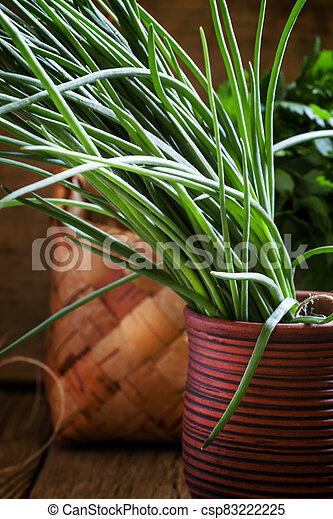 Green onions, vintage wooden background, selective focus, shallow depth of field - csp83222225