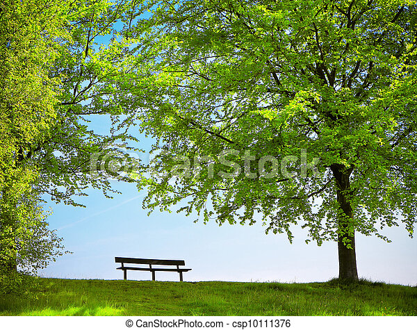 Green park in spring - csp10111376