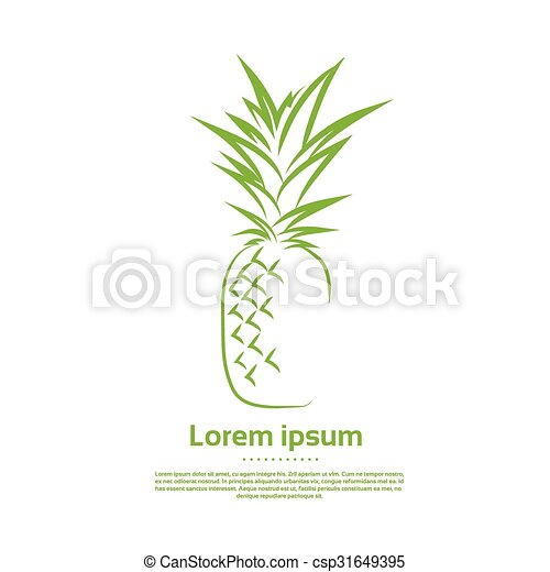 Green Pineapple Logo Draw Outline Icon Vector - csp31649395