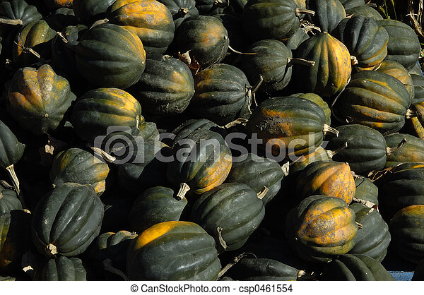 Green Pumpkins - csp0461554