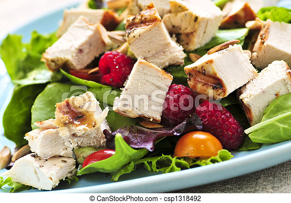 Green salad with grilled chicken - csp1318492