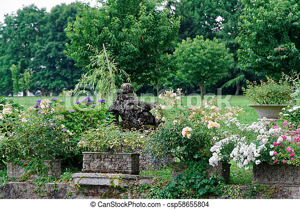 Green Scene In Public Park Trees Flowers And Garden Environment