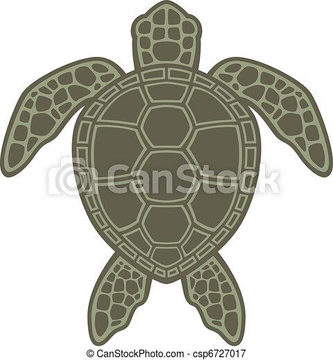Green Sea Turtle - csp6727017