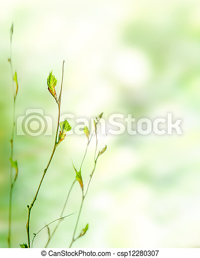Green spring nature background with buds - csp12280307