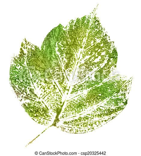 green stamp of leaf - csp20325442