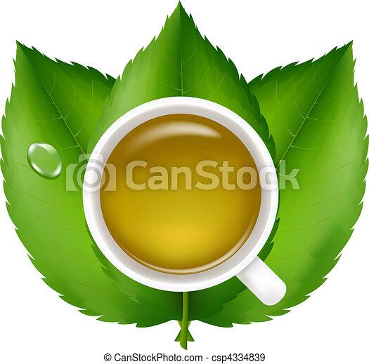 Green Tea - csp4334839