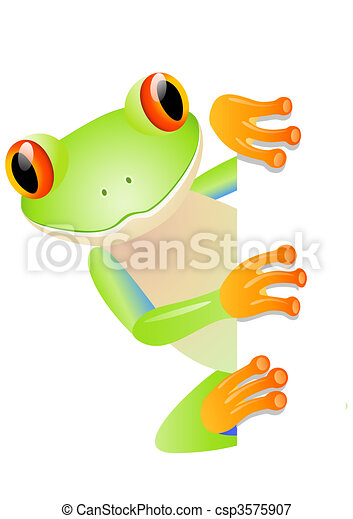 Green tree frog and blank space - csp3575907