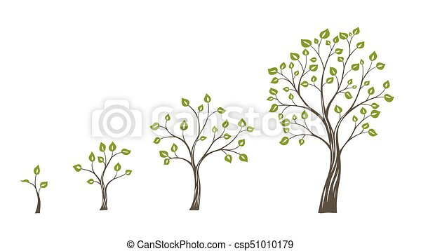 Green Tree Growth Eco Concept Tree Life Cycle Canstock Download cute cartoon tree collection vector art. https www canstockphoto com green tree growth eco concept tree life 51010179 html