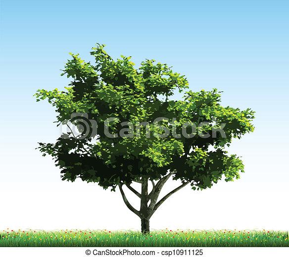 Green tree on grass. Vector - csp10911125