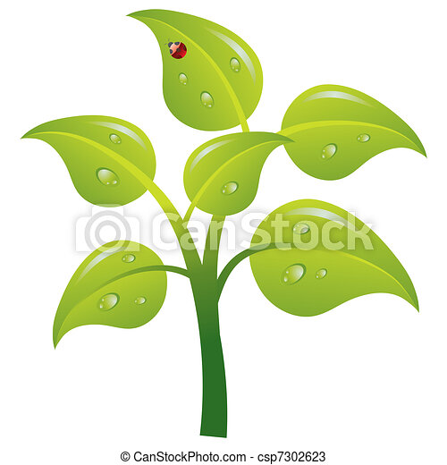 Green tree, vector - csp7302623