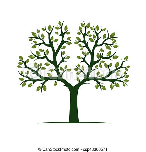 Green Tree with Leafs. Vector Illustration. - csp43380571
