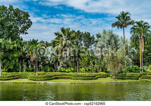 Green trees and lake - csp52162965