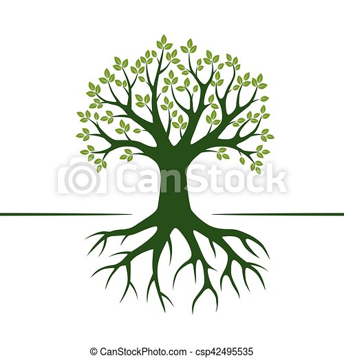 Green Vector Tree and Roots. Vector Illustration. - csp42495535