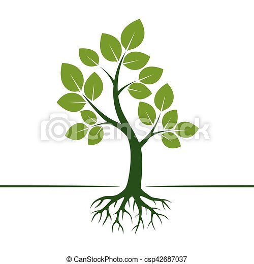 Green Vector Tree and Roots. Vector Illustration. - csp42687037