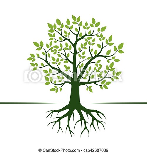 Green Vector Tree and Roots. Vector Illustration. - csp42687039