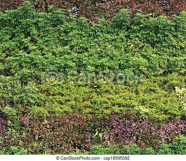 Green Wall Vertical Garden Stock Photo