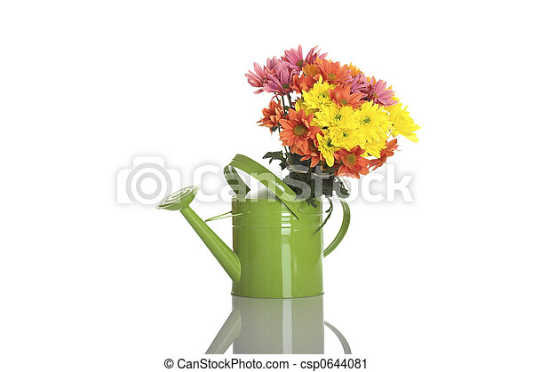 Green watering can with flowers - csp0644081