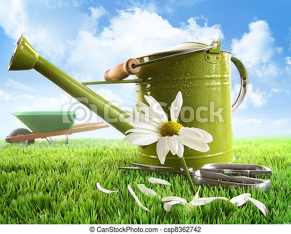 Green watering can with large daisy - csp8362742