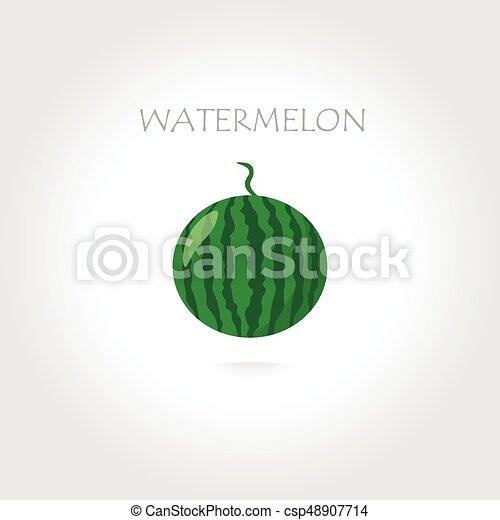 green watermelon illustration - csp48907714