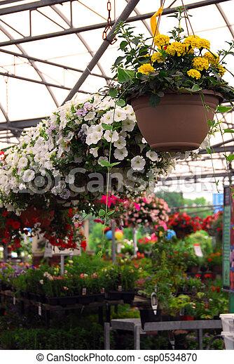Greenhouse - csp0534870