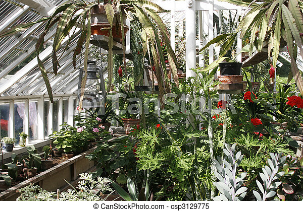Groovy Greenhouse With Plants Interior Design Ideas Philsoteloinfo