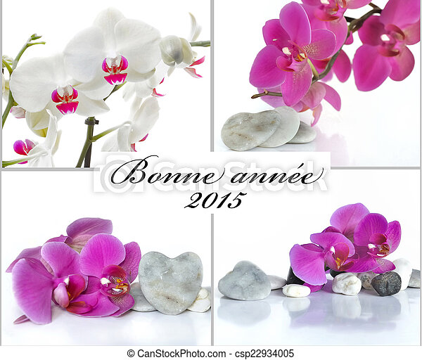 Greeting card in french french greeting card for the new year with greeting card in french csp22934005 m4hsunfo