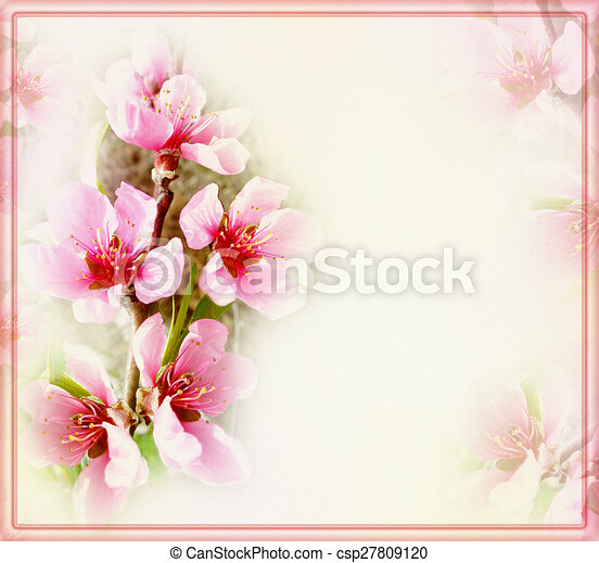 greeting floral card with peach flowers and frame on blurred light background can stock photo