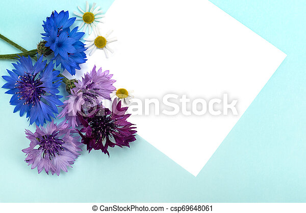 Greetings card with flowers on blue background. - csp69648061