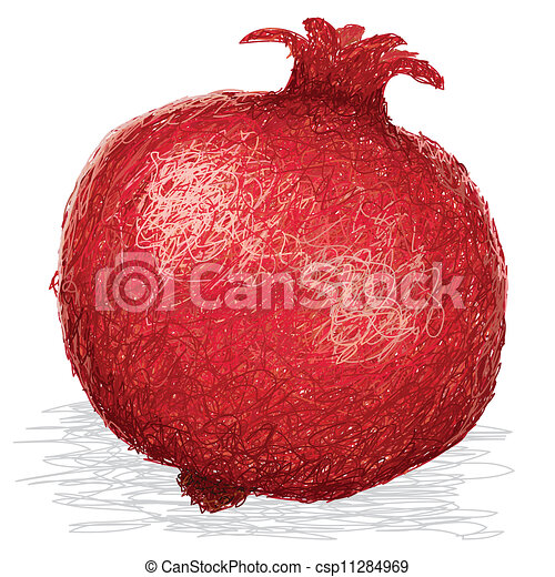 M re grenade isol illustration arri re plan fruit closeup blanc - Grenade fruit dessin ...