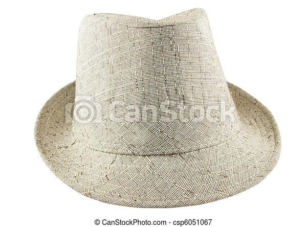 grey hat - csp6051067