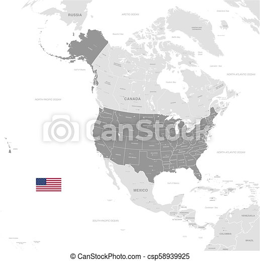 Grey Vector Political Map of USA on countries border belize, countries border bangladesh, countries border brazil, countries border armenia, countries border venezuela, countries border paraguay, countries border croatia, countries border guatemala, countries border thailand, countries border ireland, countries border argentina, countries border bhutan, countries border israel, countries border europe, countries border czech republic, countries border france, countries border lebanon, countries border portugal, countries border colombia, countries border ethiopia,
