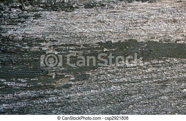 Grey wood texture - csp2921808
