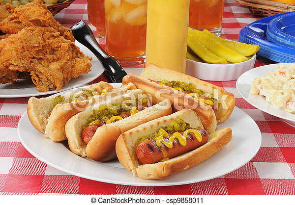 Grilled hot dogs - csp9858011