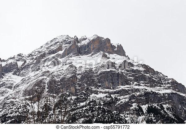 Grindelwald, swiss alps - csp55791772