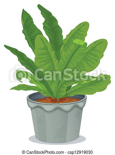 gris plante int rieur pot gris plante int rieur illustration fond blanc pot. Black Bedroom Furniture Sets. Home Design Ideas
