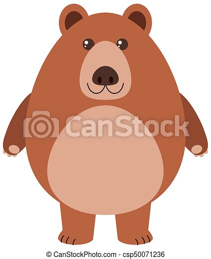 Grizzly bear on white background - csp50071236