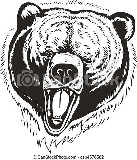 Grizzly Brown Bear Vector - csp4578562