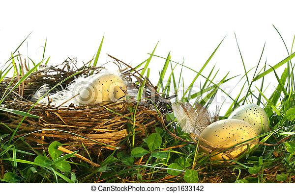 groß, eier, gras, nest - csp1633142