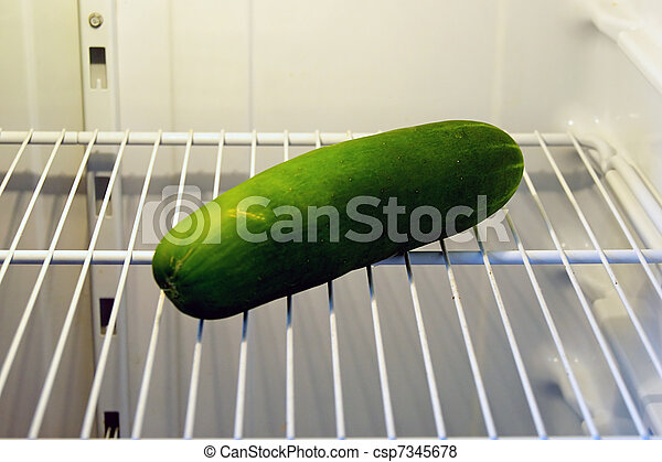 gurke kühlschrank