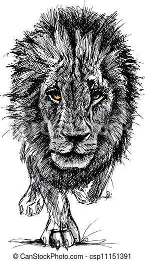 groß, skizze, männlicher löwe, afrikanisch - csp11151391