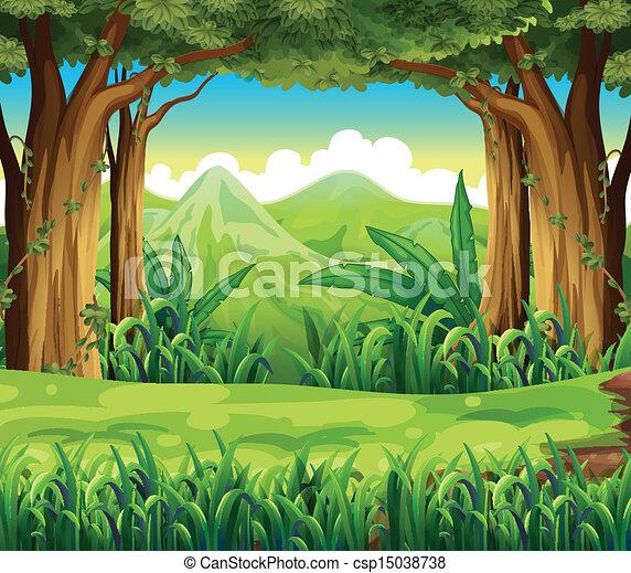 groen bos - csp15038738