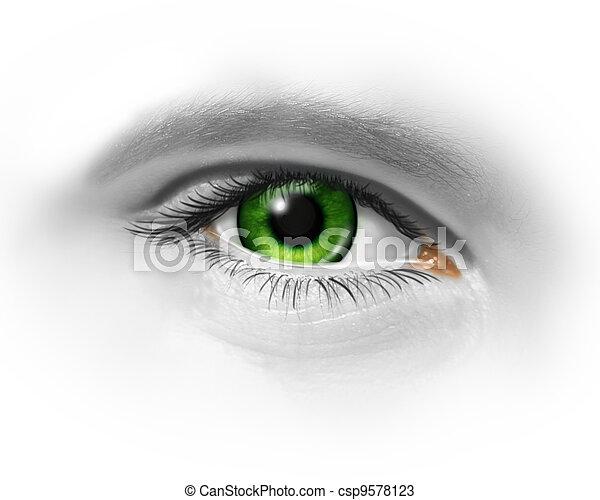 groen oog, menselijk - csp9578123