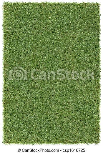 groot, gras, achtergrond - csp1616725