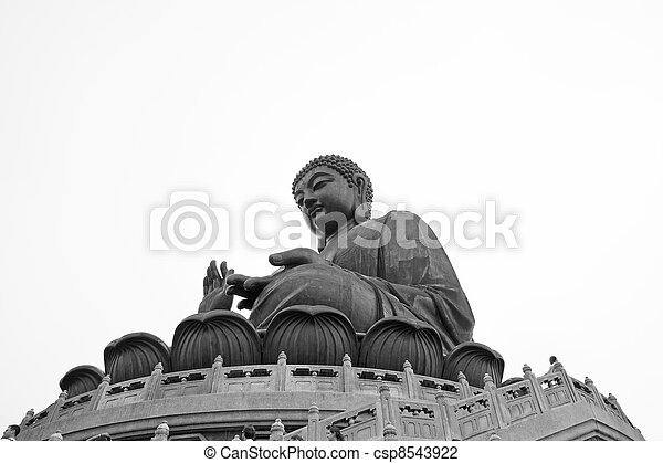 groot, hong, boeddha, kong - csp8543922