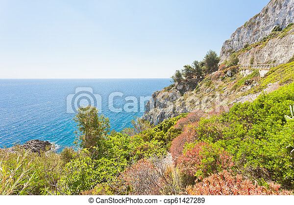 Apulien, Leuca, Grotte von Ciolo - Vegetation an der Küste der Grotte ciolo - csp61427289
