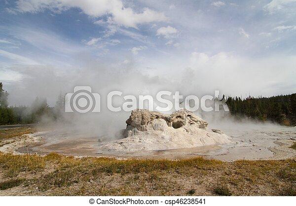 Grotto Geyser in Yellowstone - csp46238541