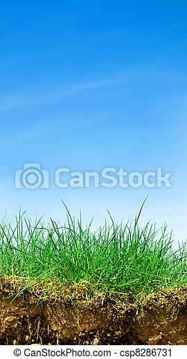 Ground, grass, sky cross section - csp8286731