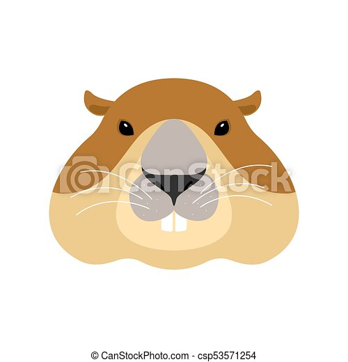 groundhog face woodchuck head marmot vector illustration rh canstockphoto com woodchuck clipart free Wood Chuck Cartoon