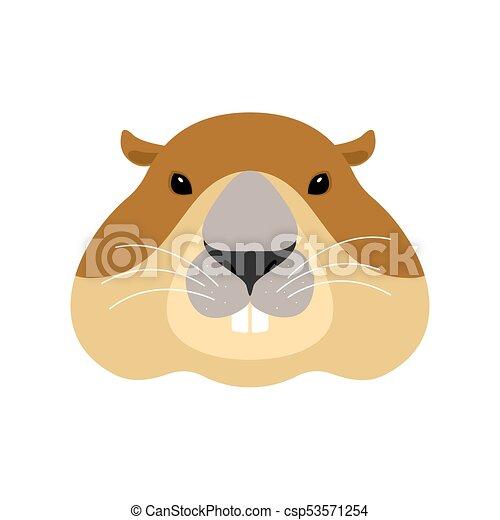 groundhog face woodchuck head marmot vector illustration rh canstockphoto ca Wood Chuck Groundhog Graphics