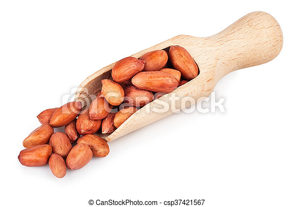 Groundnut in wooden scoop isolated on white background - csp37421567